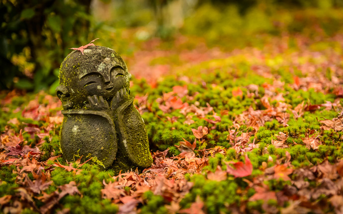 a whimical statue at the Enkoji Temple (圓光寺) in Kyoto Japan