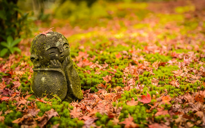 desktop background image of a fall-foliage scene in Kyoto, Japan -- My Turn -- Enkoji Temple (円光寺) -- Copyright 2015 Jeffrey Friedl, http://regex.info/blog/