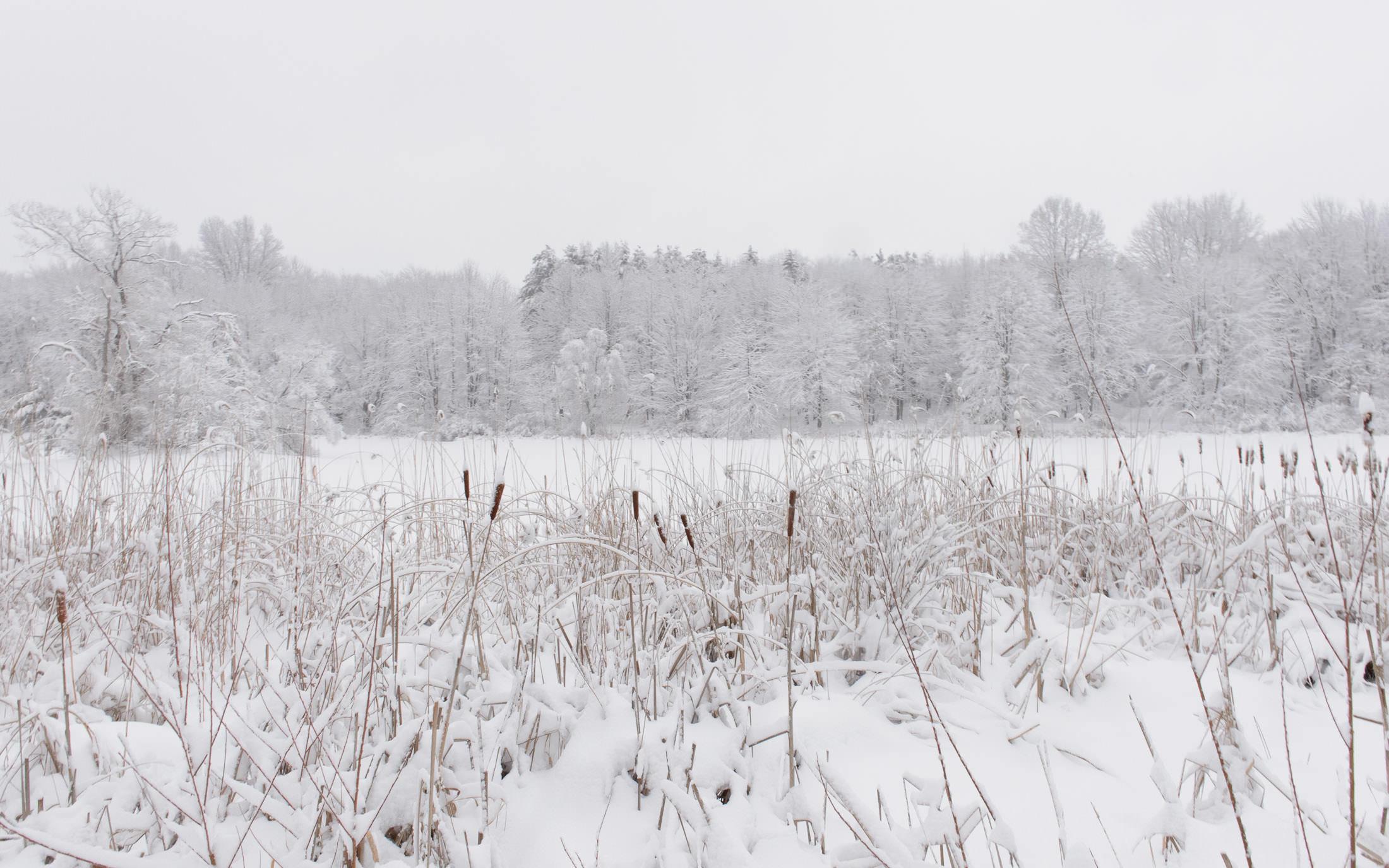 jeffrey friedl's blog » snowy ohio morning, take 2