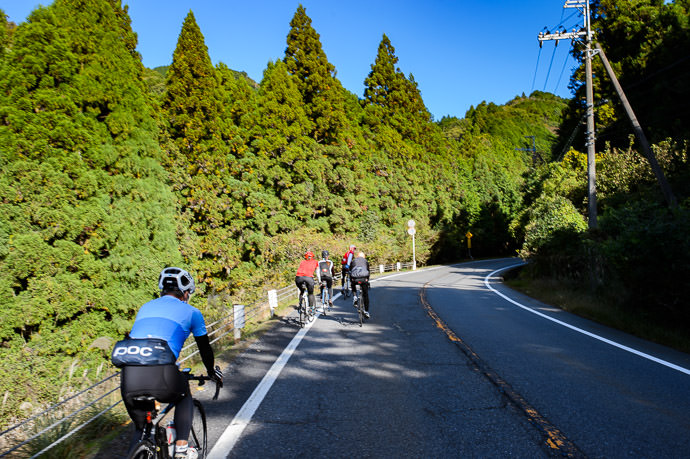 First Big Climb up the hairpins to Hanaore Pass 8:49am -- Otsu, Shiga, Japan -- Copyright 2016 Jeffrey Friedl, http://regex.info/blog/