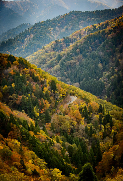 near Onyu Pass (おにゅう峠の近く) in the mountains way north of Kyoto, Japan -- near Onyu Pass (おにゅう峠の近く) -- Takashima, Shiga, Japan -- Copyright 2016 Jeffrey Friedl, http://regex.info/blog/