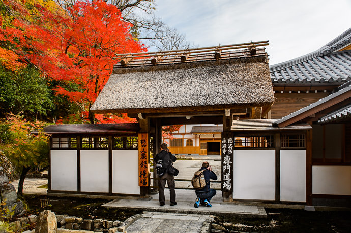 Rearmost Courtyard Eigenji Temple (永源寺), Shiga Japan -- Eigenji Temple (永源寺) -- Higashiomi, Shiga, Japan -- Copyright 2016 Jeffrey Friedl, http://regex.info/blog/ -- This photo is licensed to the public under the Creative Commons Attribution-NonCommercial 4.0 International License http://creativecommons.org/licenses/by-nc/4.0/ (non-commercial use is freely allowed if proper attribution is given, including a link back to this page on http://regex.info/ when used online)