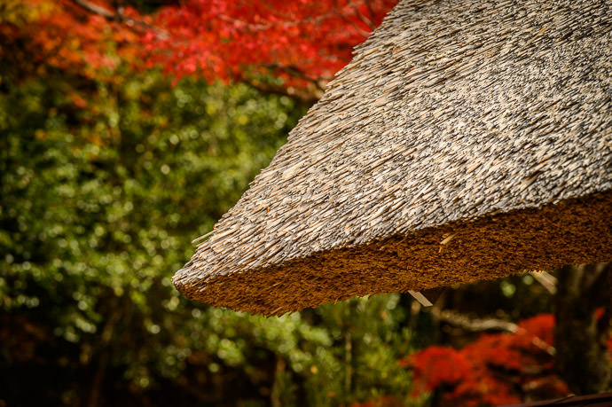 More Roof Detail -- Eigenji Temple (永源寺) -- Higashiomi, Shiga, Japan -- Copyright 2016 Jeffrey Friedl, http://regex.info/blog/ -- This photo is licensed to the public under the Creative Commons Attribution-NonCommercial 4.0 International License http://creativecommons.org/licenses/by-nc/4.0/ (non-commercial use is freely allowed if proper attribution is given, including a link back to this page on http://regex.info/ when used online)
