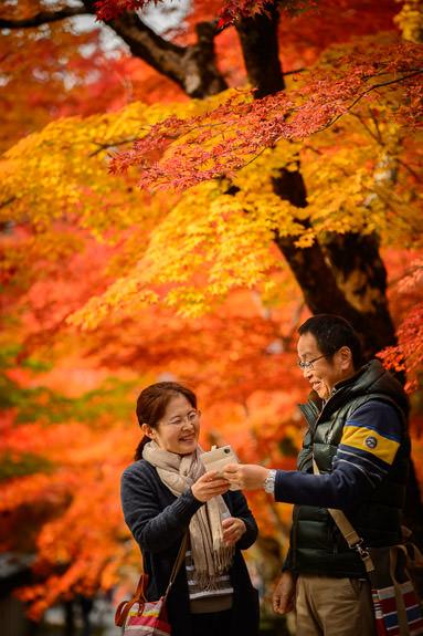 Return Camera -- Eigenji Temple (永源寺) -- Higashiomi, Shiga, Japan -- Copyright 2016 Jeffrey Friedl, http://regex.info/blog/