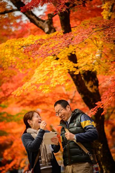 Enjoy -- Eigenji Temple (永源寺) -- Higashiomi, Shiga, Japan -- Copyright 2016 Jeffrey Friedl, http://regex.info/blog/