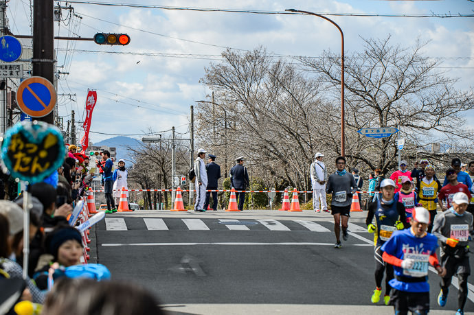 Wider Scene -- Kyoto Marathon 2017 -- Kyoto, Japan -- Copyright 2017 Jeffrey Friedl, http://regex.info/blog/