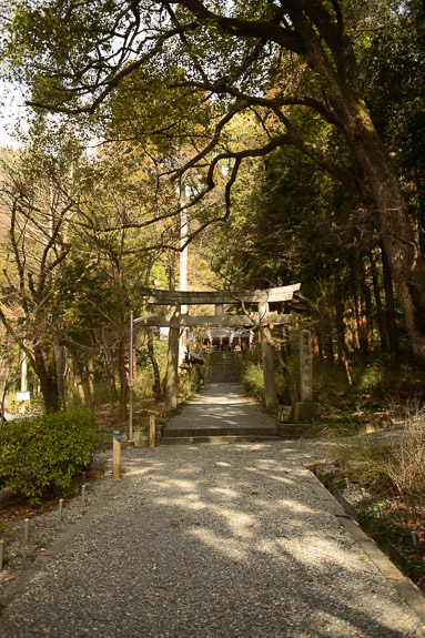 Between the Gates -- Shiio Shrine (椎尾神社) -- Yamazaki, Osaka, Japan -- Copyright 2017 Jeffrey Friedl, http://regex.info/blog/ -- This photo is licensed to the public under the Creative Commons Attribution-NonCommercial 4.0 International License http://creativecommons.org/licenses/by-nc/4.0/ (non-commercial use is freely allowed if proper attribution is given, including a link back to this page on http://regex.info/ when used online)