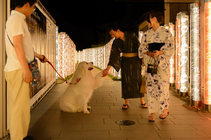 Meeting Minnie this man was much nicer, and his dog more beautiful -- Arashiyama Station -- Kyoto, Japan -- Copyright 2017 Jeffrey Friedl, http://regex.info/blog/