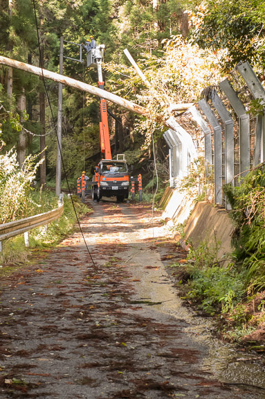 Stringing Power Lines on the road leading to the Shimyouin Temple (志明院) -- Kyoto, Japan -- Copyright 2017 Jeffrey Friedl, http://regex.info/blog/ -- This photo is licensed to the public under the Creative Commons Attribution-NonCommercial 4.0 International License http://creativecommons.org/licenses/by-nc/4.0/ (non-commercial use is freely allowed if proper attribution is given, including a link back to this page on http://regex.info/ when used online)