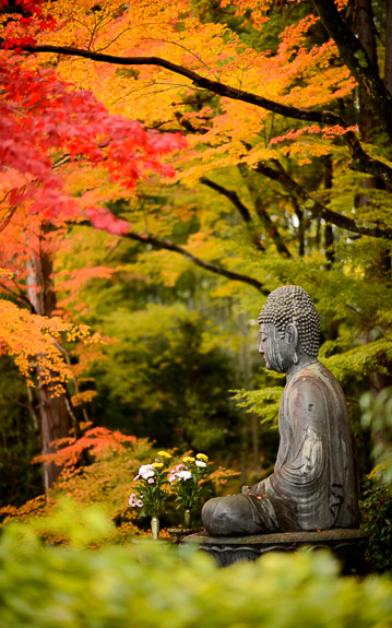 desktop background image of the Bhudda at the Eisho-in Temple (栄摂院), Kyoto Japan -- Sneaking a Peek at Eisho-in's Buddha from the neighboring temple -- Konkaikomyou-ji Temple (金戒光明寺) -- Copyright 2017 Jeffrey Friedl, http://regex.info/blog/ -- This photo is licensed to the public under the Creative Commons Attribution-NonCommercial 4.0 International License http://creativecommons.org/licenses/by-nc/4.0/ (non-commercial use is freely allowed if proper attribution is given, including a link back to this page on http://regex.info/ when used online)
