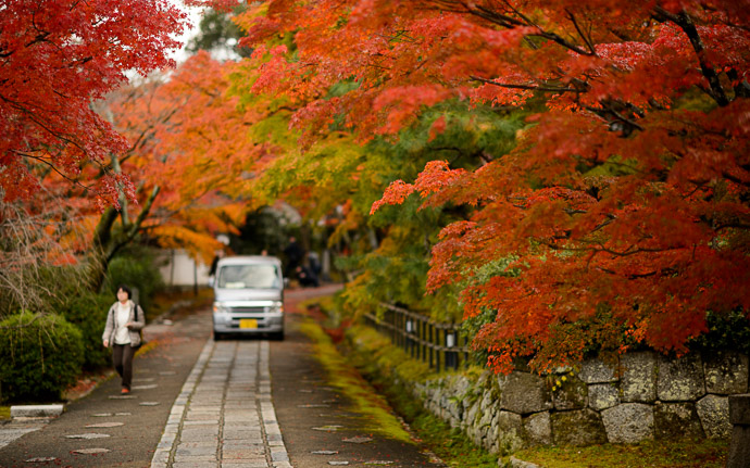 desktop background image of a fall-foliage scene at the Shinnyodo Temple (真如堂本坊), Kyoto Japan -- Shinnyodo Temple (真如堂本坊) -- Copyright 2017 Jeffrey Friedl, http://regex.info/blog/ -- This photo is licensed to the public under the Creative Commons Attribution-NonCommercial 4.0 International License http://creativecommons.org/licenses/by-nc/4.0/ (non-commercial use is freely allowed if proper attribution is given, including a link back to this page on http://regex.info/ when used online)