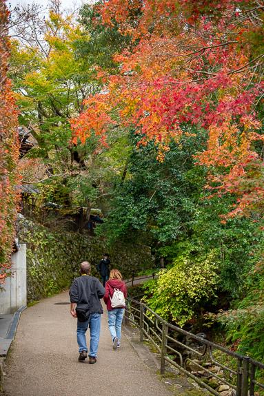 A Few Colors -- Ohara -- Kyoto, Japan -- Copyright 2018 Jeffrey Friedl, http://regex.info/blog/