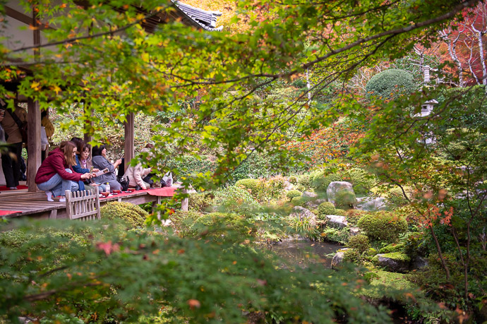 Main Garden few colors yet, besides green -- Sanzen-in Temple (三千院) -- Kyoto, Japan -- Copyright 2018 Jeffrey Friedl, http://regex.info/blog/