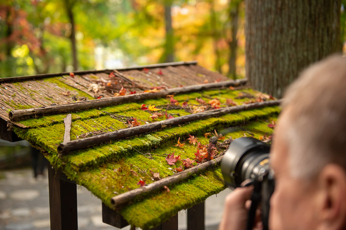 Photographers are Suckers for moss -- Sanzen-in Temple (三千院) -- Kyoto, Japan -- Copyright 2018 Jeffrey Friedl, http://regex.info/blog/