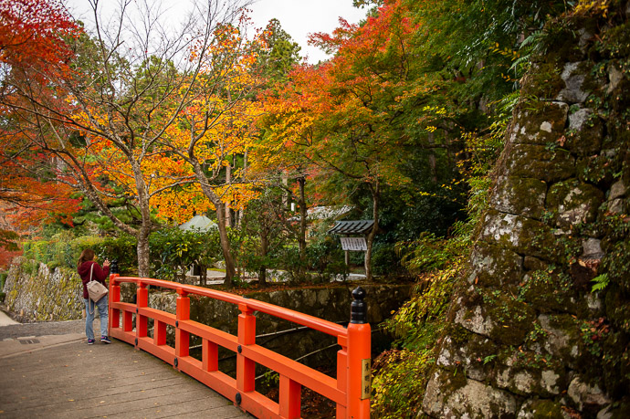 Fading Light -- Ohara -- Kyoto, Japan -- Copyright 2018 Jeffrey Friedl, http://regex.info/blog/