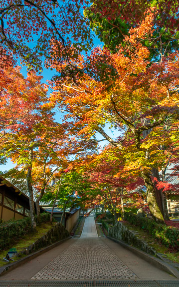 the main path at the Eigenji Temple (永源寺)in Shiga Japan, in autumn.