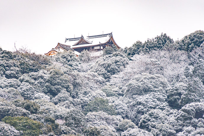 Watching Over a Frozen Kyoto temple at Shogunzuka, Kyoto Japan -- Copyright 2019 Jeffrey Friedl, http://regex.info/blog/