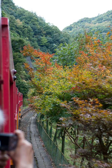 Touch of the Approaching Fall -- Kyoto, Japan -- Copyright 2008 Jeffrey Friedl, http://regex.info/blog/