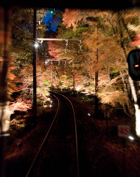 ", f/4, ISO 6400 — map & image data — nearby photos ""Momiji Tunnel"" ( ""fall-foliage tunnel"" ) -- Kyoto, Japan -- Copyright 2008 Jeffrey Friedl, http://regex.info/blog/"