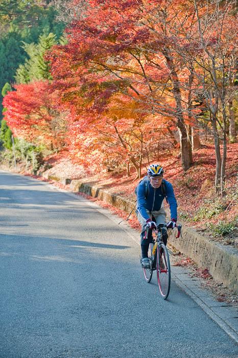 Traffic Jam -- Kyoto, Japan -- Copyright 2008 Jeffrey Friedl, http://regex.info/blog/