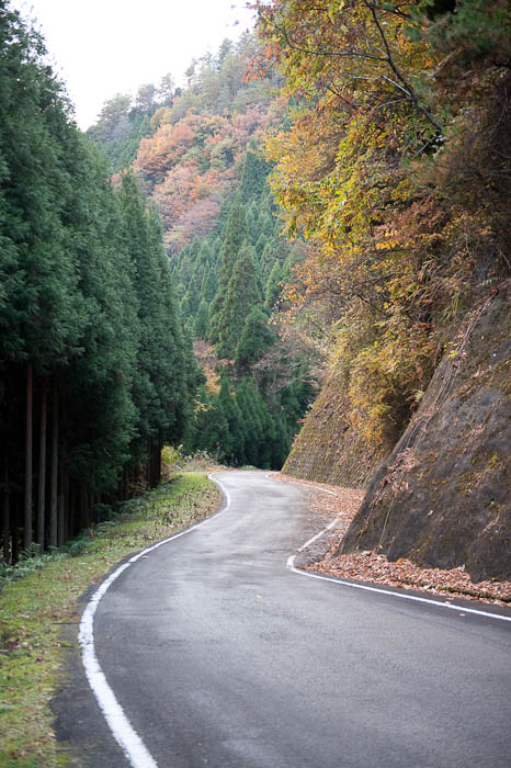 More Luxuriously-Wide Road -- Nantan, Kyoto, Japan -- Copyright 2008 Jeffrey Friedl, http://regex.info/blog/