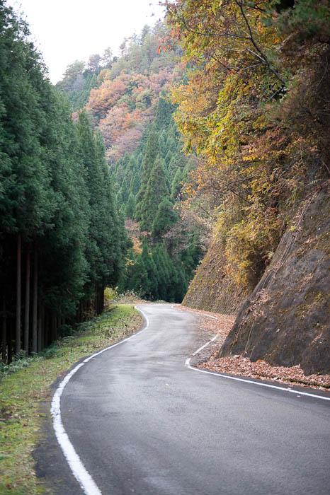 More Luxuriously-Wide Road -- Nantan, Kyoto, Japan -- Copyright 2008 Jeffrey Friedl, http://regex.info/blog/