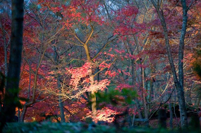 "— map & image data — nearby photos ""Lightup"" Getting Started -- Shogunzuka -- Kyoto, Japan -- Copyright 2008 Jeffrey Friedl, http://regex.info/blog/"