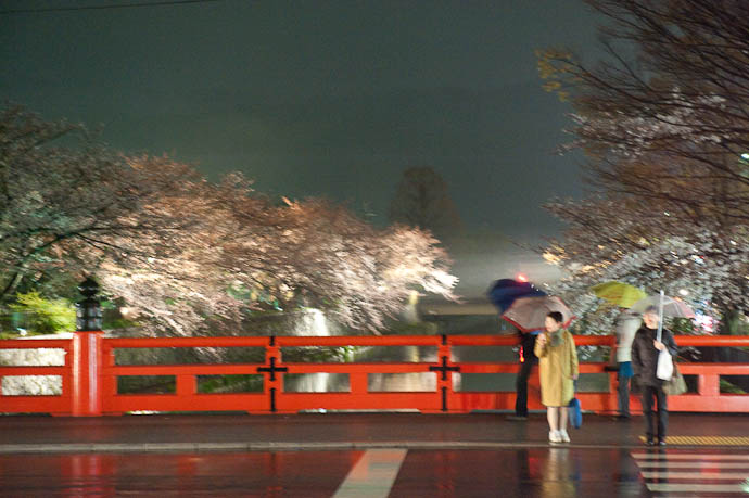 , f/4.5, ISO 6400 — map & image data — nearby photos Wet Cherry-Blossom Lightup in cold, wet Kyoto Japan -- Okazaki Cherry-Blossom Lightup -- Copyright 2009 Jeffrey Friedl, http://regex.info/blog/