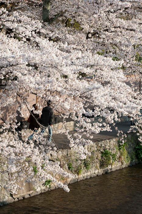 Moment of Respite -- Kyoto, Japan -- Copyright 2009 Jeffrey Friedl, http://regex.info/blog/