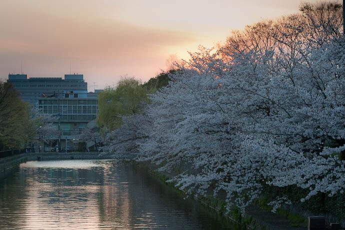 Fifteen Minutes Before Sunset 6:06pm -- Kyoto, Japan -- Copyright 2009 Jeffrey Friedl, http://regex.info/blog/