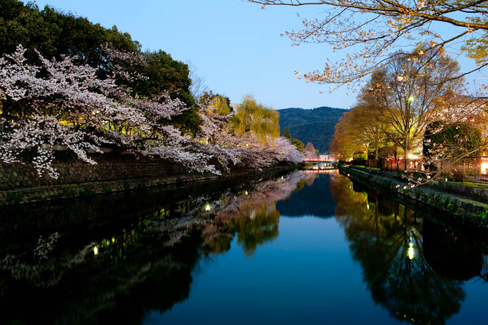 , f/13, ISO 400 — map & image data — nearby photos Getting Closer 6:47pm -- Okazaki Cherry-Blossom Lightup -- Kyoto, Japan -- Copyright 2009 Jeffrey Friedl, http://regex.info/blog/