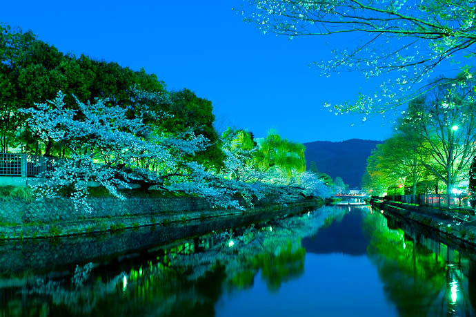 desktop background image of trees laden with cherry blossoms hanging over the Biwako Canal in Kyoto, Japan, at dusk -- , f/9, ISO 1600 — map & image data — nearby photos Whoa, Cool -- Okazaki Cherry-Blossom Lightup -- Copyright 2009 Jeffrey Friedl, http://regex.info/blog/