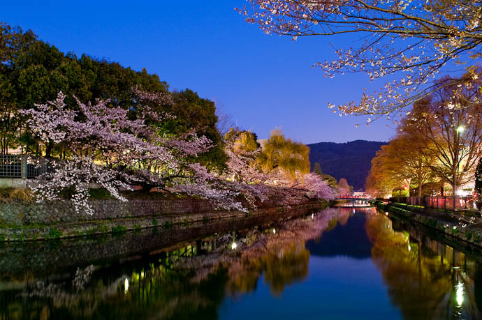 , f/9, ISO 1600 — map & image data — nearby photos Cherry Blossoms at Dusk over the Biwako Canal, Kyoto Japan -- Okazaki Cherry-Blossom Lightup -- Copyright 2009 Jeffrey Friedl, http://regex.info/blog/