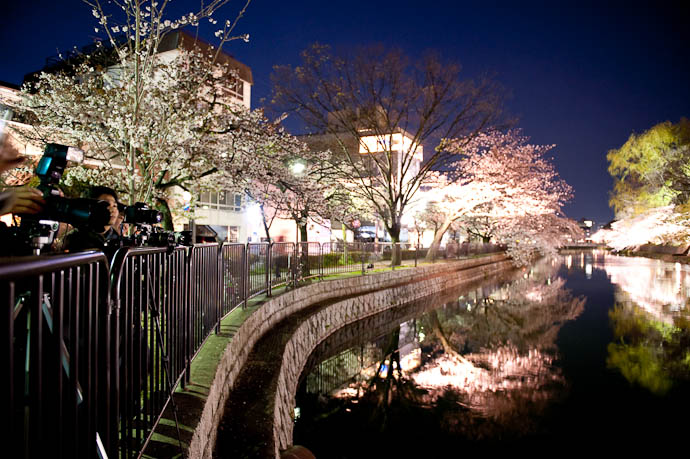 7:10pm -- Okazaki Cherry-Blossom Lightup -- Kyoto, Japan -- Copyright 2009 Jeffrey Friedl, http://regex.info/blog/