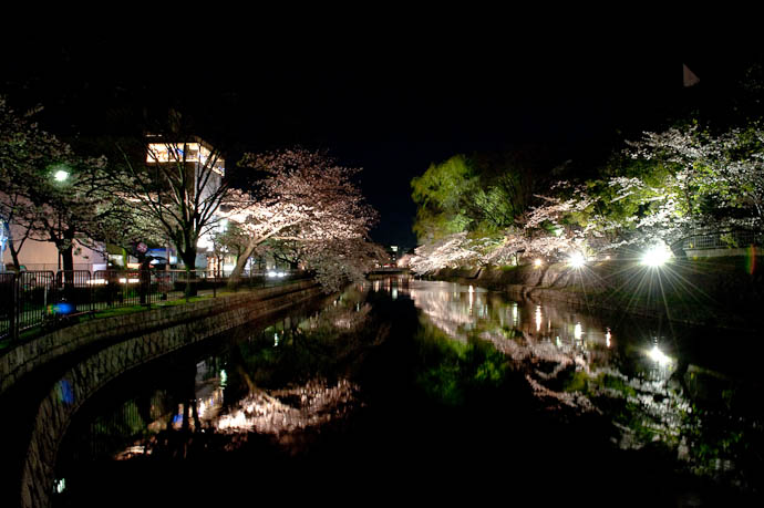 Pretty Dark 7:10pm -- Okazaki Cherry-Blossom Lightup -- Kyoto, Japan -- Copyright 2009 Jeffrey Friedl, http://regex.info/blog/