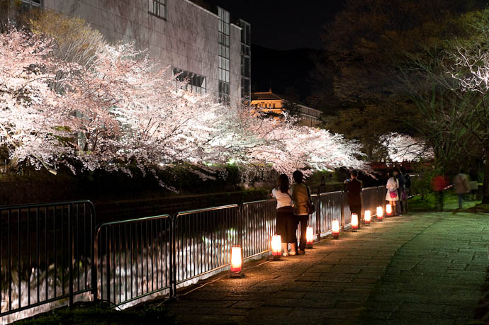 Mini Hanatoro Okazaki borrowing some of Higashiyama's lanterns — 7:37pm -- Okazaki Cherry-Blossom Lightup -- Kyoto, Japan -- Copyright 2009 Jeffrey Friedl, http://regex.info/blog/