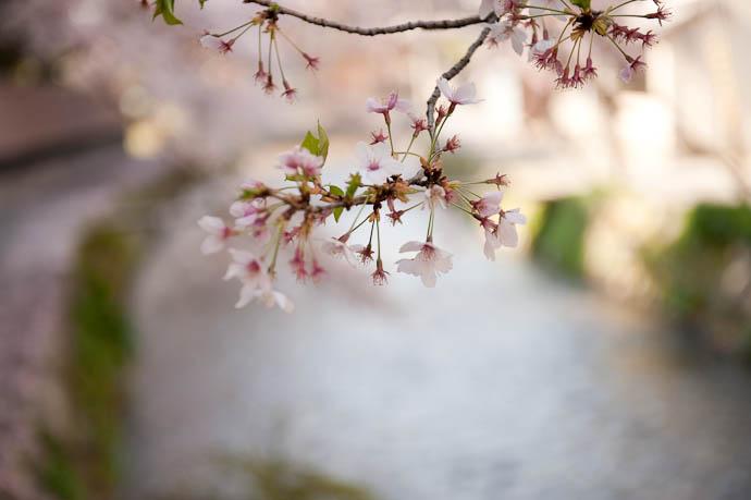 Winding Down -- Kyoto, Japan -- Copyright 2009 Jeffrey Friedl, http://regex.info/blog/