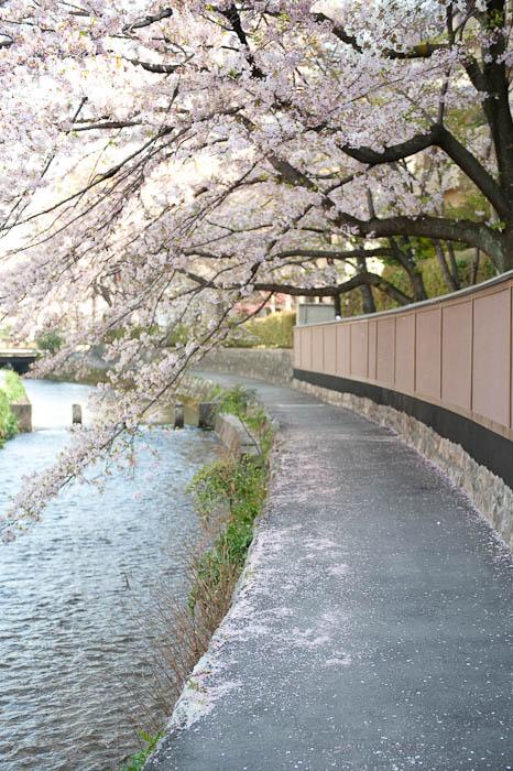 Kyoto, Japan -- Copyright 2009 Jeffrey Friedl, http://regex.info/blog/