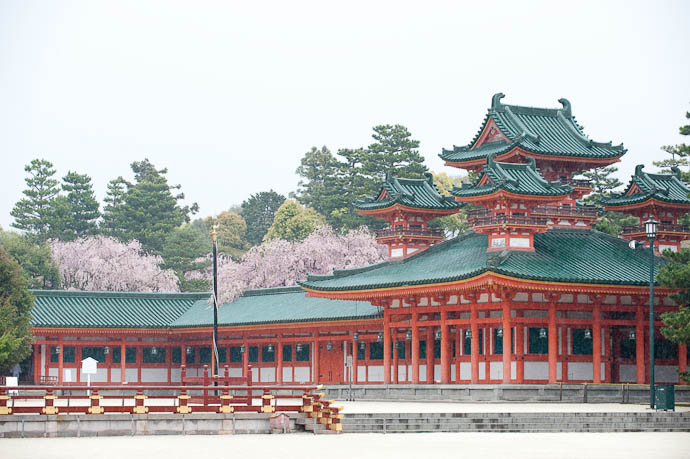 Subdued Cherry Blossoms Peeking Over the Building -- Heian Shrine -- Kyoto, Japan -- Copyright 2009 Jeffrey Friedl, http://regex.info/blog/