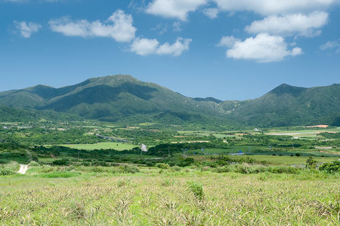 Pineapple Field and Mountains -- Ishigaki, Okinawa, Japan -- Copyright 2009 Jeffrey Friedl, http://regex.info/blog/