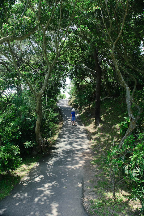 Heading up to the Lookout -- Ishigaki, Okinawa, Japan -- Copyright 2009 Jeffrey Friedl, http://regex.info/blog/