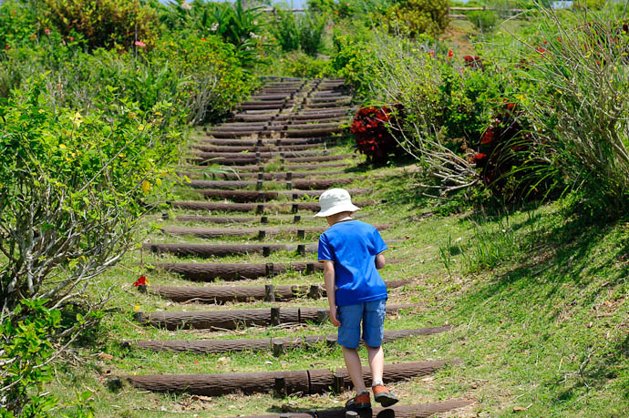 Getting Steeper -- Ishigaki, Okinawa, Japan -- Copyright 2009 Jeffrey Friedl, http://regex.info/blog/