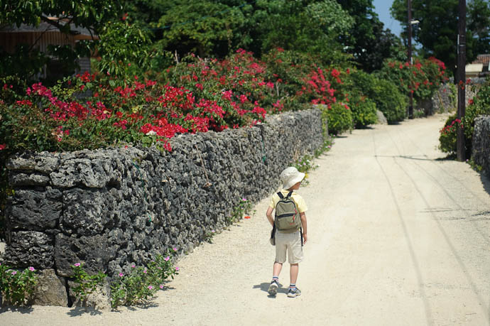Leading the Stroll along the prettiest lane, where we eventually took a family portrait -- Taketomi Island, Okinawa, Japan -- Copyright 2009 Jeffrey Friedl, http://regex.info/blog/