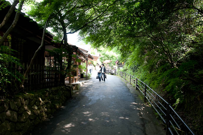 Lane Leading to the Temple -- Sanzen-in Temple -- Kyoto, Japan -- Copyright 2009 Jeffrey Friedl, http://regex.info/blog/