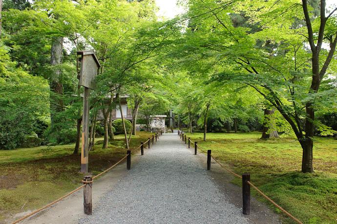 Path Sanzen-in Temple, Ohara, Kyoto Japan -- Sanzen-in Temple -- Copyright 2009 Jeffrey Friedl, http://regex.info/blog/