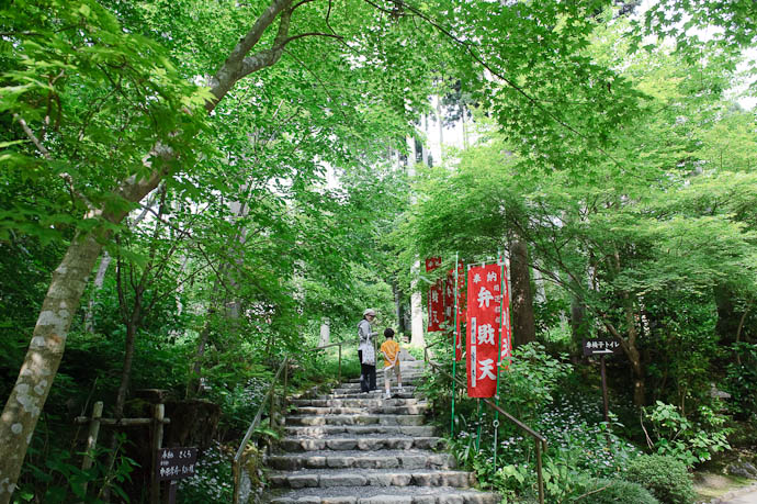 Ever Upward -- Sanzen-in Temple -- Kyoto, Japan -- Copyright 2009 Jeffrey Friedl, http://regex.info/blog/