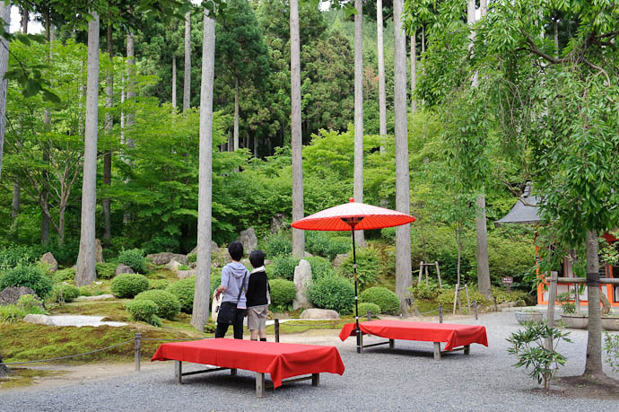 Pleasant Area all to themselves -- Sanzen-in Temple -- Kyoto, Japan -- Copyright 2009 Jeffrey Friedl, http://regex.info/blog/