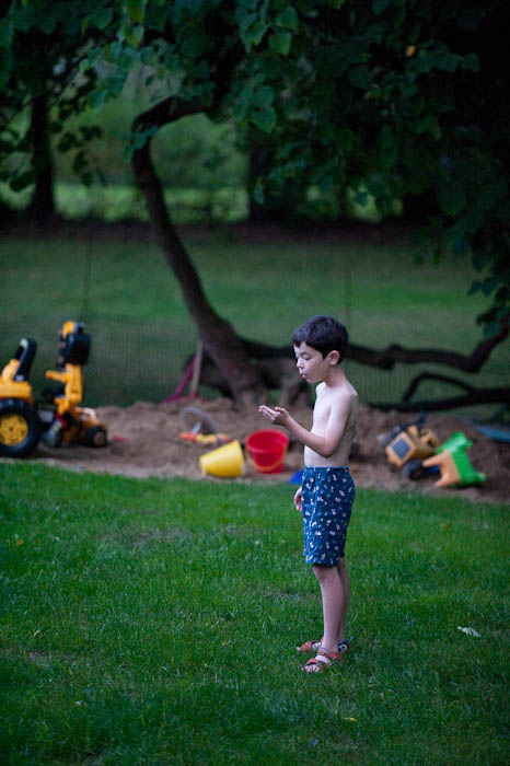 Releasing a Firefly -- My Folks' Place -- Rootstown, Ohio, USA -- Copyright 2009 Jeffrey Friedl, http://regex.info/blog/