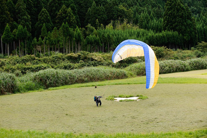Partner in Flight? At the edge of the mowed circle, above the paraglider, is a bird of prey coming in for a landing as well -- Kyoto, Japan -- Copyright 2009 Jeffrey Friedl, http://regex.info/blog/