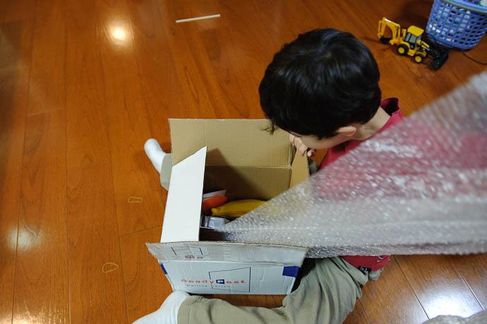 Getting Past the Bubblewrap Defenses -- Kyoto, Japan -- Copyright 2009 Jeffrey Friedl, http://regex.info/blog/